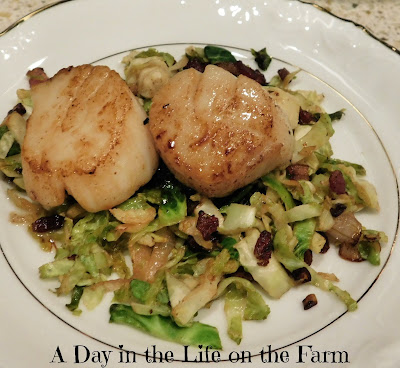 Crispy Bacon and Brussels Sprouts with Seared Scallops