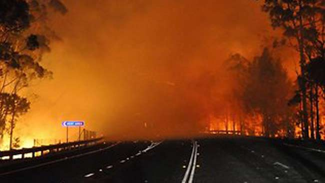 nsw fires - photo #47