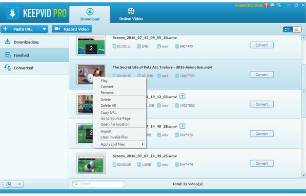 KeepVid%2BPro%2B2 - KeepVid Pro Windows