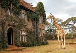 The Giraffe Manor is amongst the finest Nairobi's spectacular constructions and a blissful choice of lodging; it's amusing. The stunning ancient mansion has historic and a heartening environment. The most exciting thing of the wonderful building are the sociable giraffes of Rothschild, they frequently thrust their long noses pushing through the windows of the breakfast room that enthuse both the staff and guests at the same time.