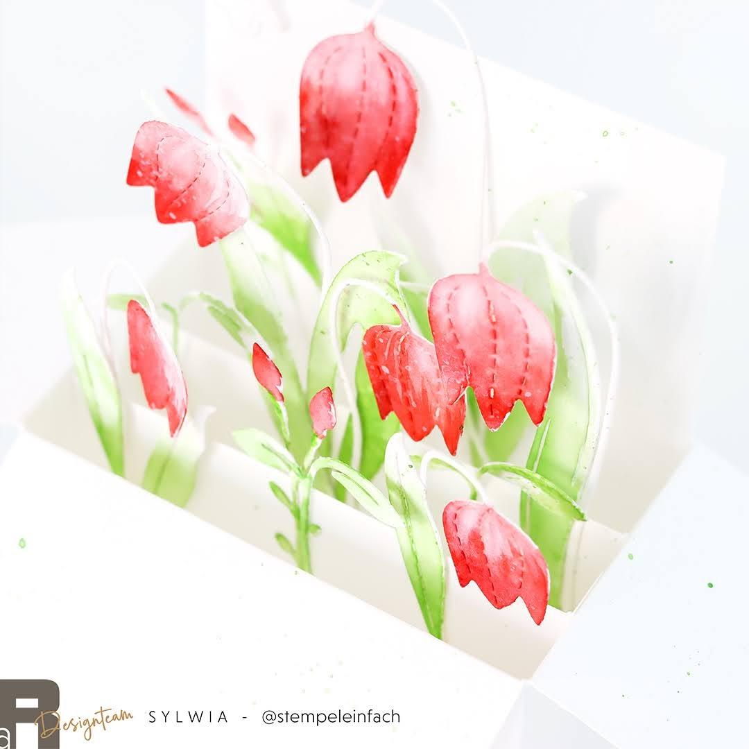 card in a box-glockenblumen-renke