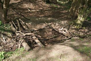 """Eine """"Brücke"""" aus Ästen und Stöcken spannt sich über einen kleinen Graben."""