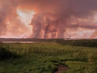 Julio del 2019 el mes mas caluroso en Alaska.