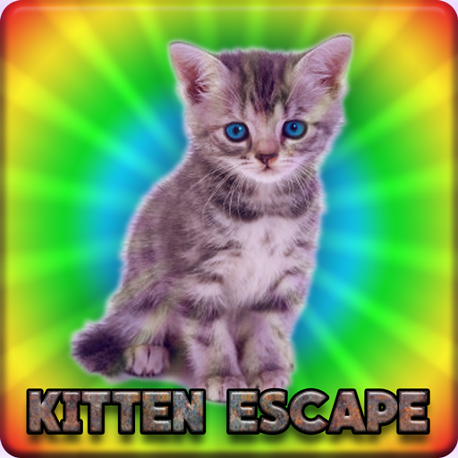 Pair Of Kitten Escape Walkthrough