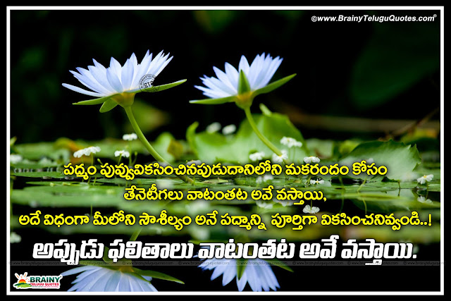 true success quotes in telugu, words on life in telugu, best messages on life in telugu, telugu motivational success quotes, best words to success in telugu, online winning quotes in telugu, Life Quotes in Telugu, Self Motivational Success Thoughts in Telugu, Best 20 Ways to be Success Quotes in Telugu, Telugu Success Messages, Keep Going forward quotes messages in Telugu, Whats App Sharing Motivational Thoughts in Telugu, Nice inspiring telugu quotes with beautiful lines, Heart touching good morning quotes in telugu, Daily inspiring quotes in telugu, Inspiring telugu quotes, Inspiring lines in telugu, telugu motivational quotes, Best inspirational quotes in telugu, Telugu life quotes with hd wallpapers, Inspiring telugu quotes,Inspirational Life Quotes in Telugu with HD wallpapers Beautiful images