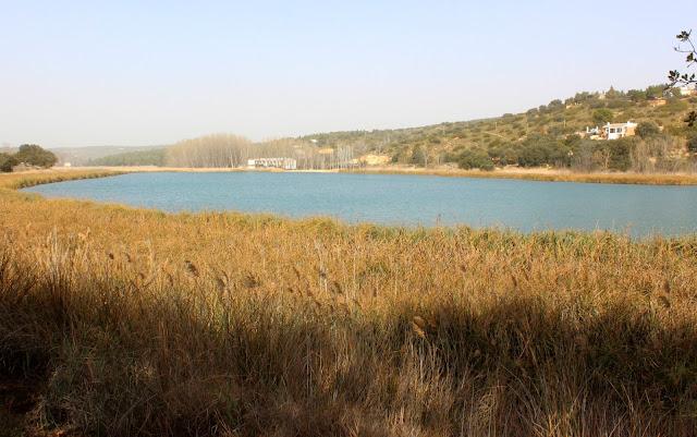 Qué ver en las lagunas de Ruidera. Laguna Morenilla