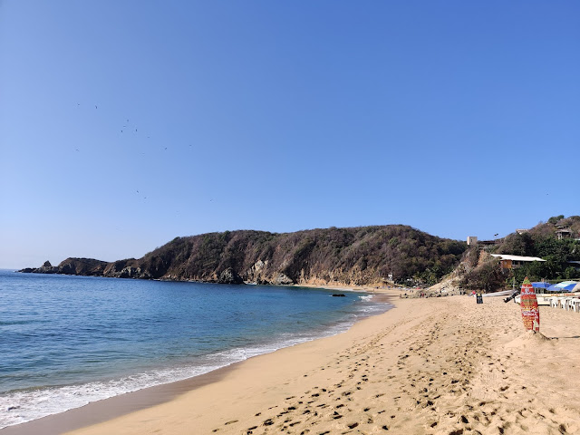 How To Plan Your Trip To Oaxaca In Mexico Mazunte