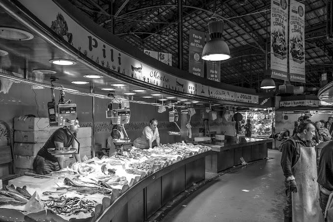 Balıkları Tanıyor muyuz? | Hayat40tansonra