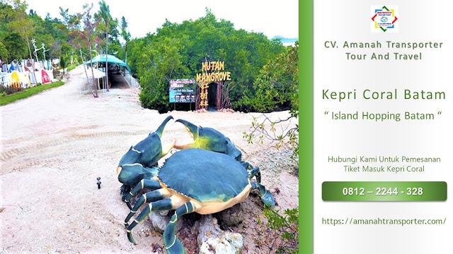 Kepri Coral Day Trip