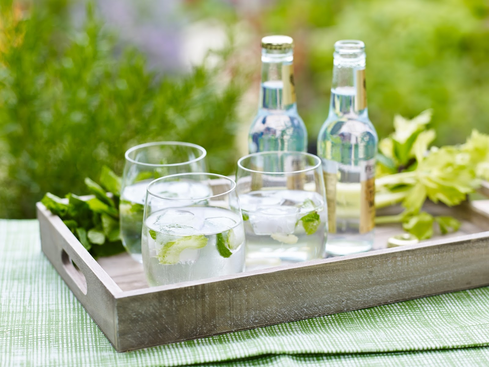 How To Make Celery And Mint Ice Cubes for Vodka And Tonic.