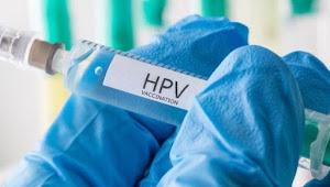 Bisa Menular Lewat Hubungan Seks, Kenali Lebih Dekat HPV
