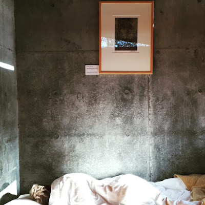 Someone asleep in a bed in the dormatory block o fthe Boyd Education Centre. Above the bed on the concrete wall is a framed Artur Boyd print.