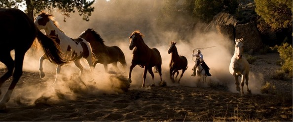 EL HOMBRE QUE MATO A LIBERTY VALANCE: COWBOYS
