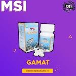 MSI GAMAT