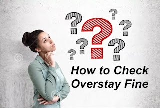 How to Check Overstay Fine in Uae