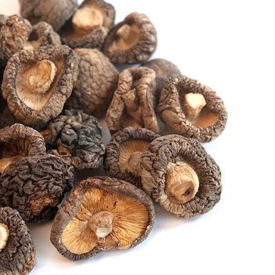 Shittake Mushroom Company in Maharashtra