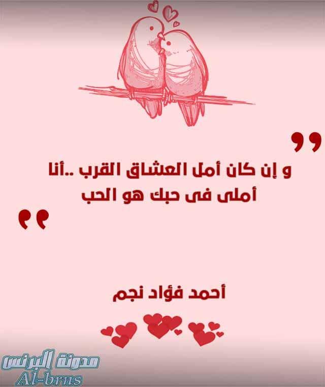 اقتباسات حب (3)