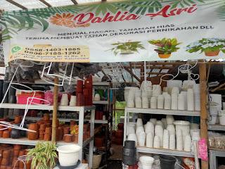 Disini jual berbagai jenis dan warna pot tanaman.