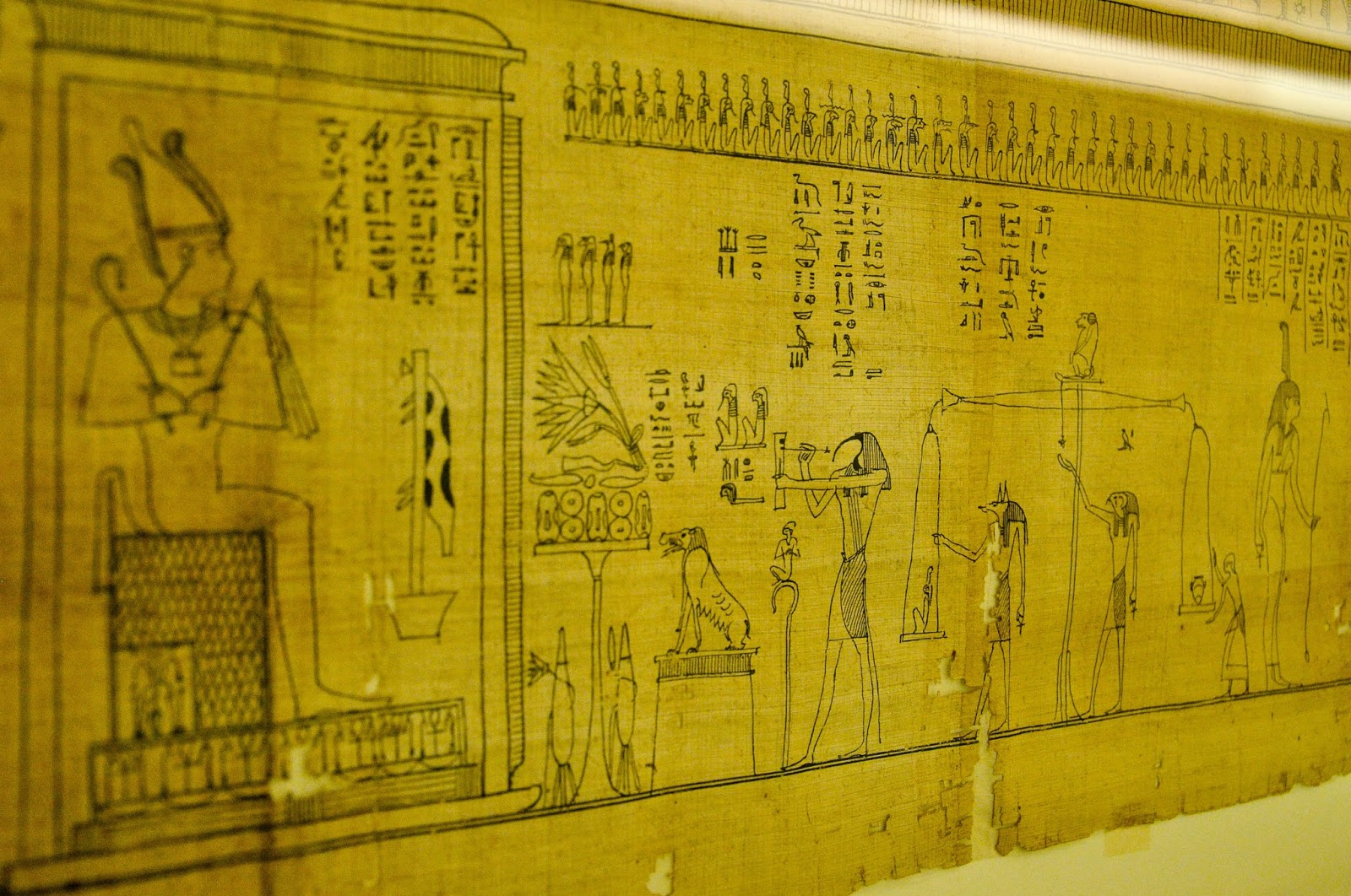 Close-up of Iuefankh's Book of the Dead, Cyperus Papyrus, Ptolomaic period (332-30 BC), Egyptian Museum, Turin, Italy