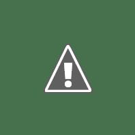 Senior Vice President – Strategic Insights  | ALDAR | وظائف الامارات