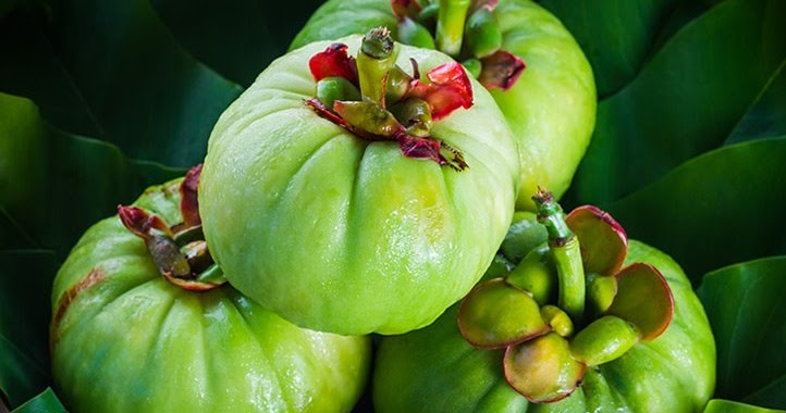 All About Garcinia Cambogia you Should Aware