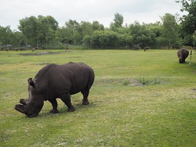 givskud eläintarha