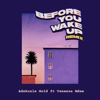 Adekunle Gold ft Vanessa Mdee - Before You Wake Up