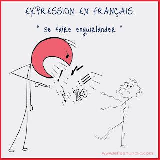expressions, expression française, expression illustrée, FLE, le FLE en un 'clic'