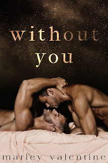 Gay romance  books Amazon