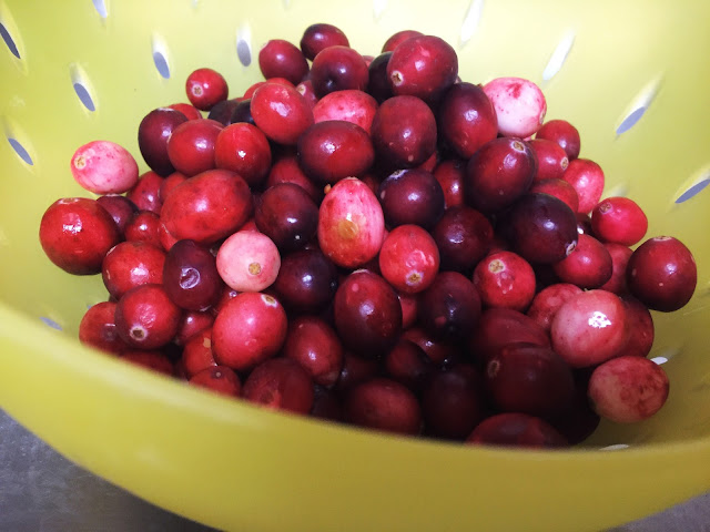 #holiday #sofabseasons # holidaydishes #cranberrysauc #cranberries