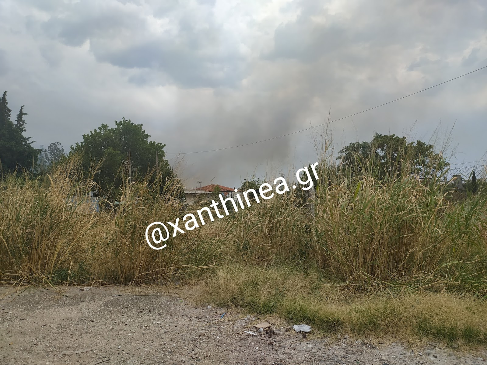 Μεγάλη πυρκαγιά στο φυτώριο της Ξάνθης - ΒΙΝΤΕΟ