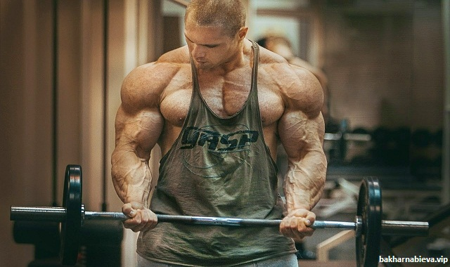 Scientific-Approach-to-Muscle6Growth