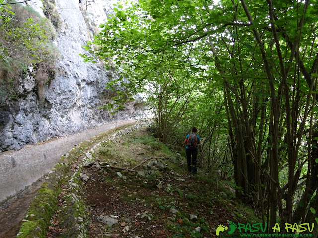 Canal de Reñinuevo: Desvío para bajar por bosque