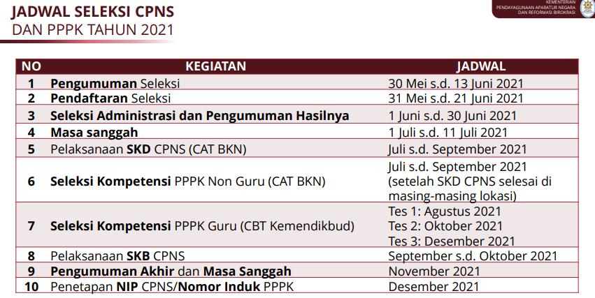 cpns dan pppk 2021
