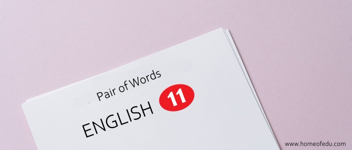 Important Pair of Words For First Year English PDF Download