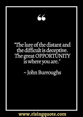 80+ Business Opportunity Quotes   Opportunity cost quotes 2021