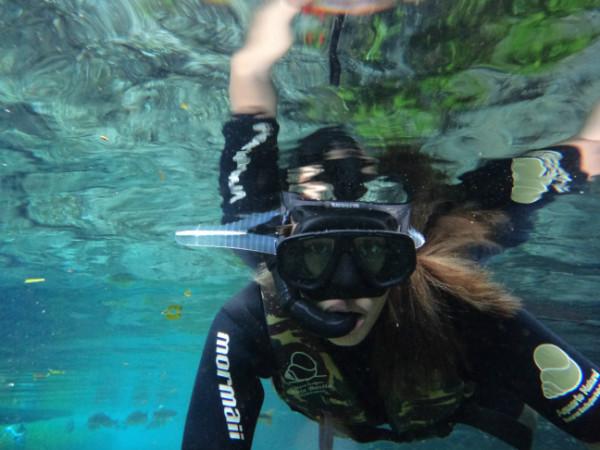 aquário natural, bonito