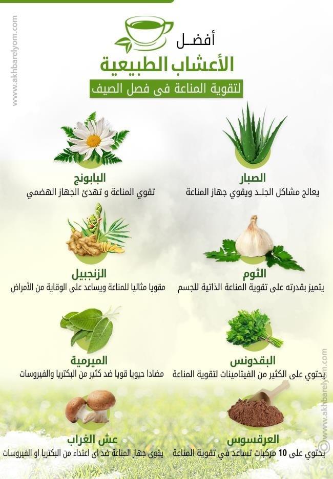اعشاب طبيعية تعمل على تقوية جهاز المناعة في جسمك