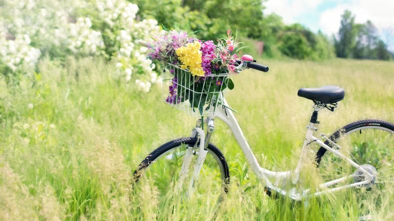 Co daje nam jazda na rowerze?