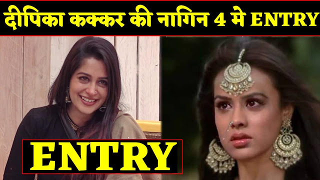 NEW ENTRY : Dipika Kakar's new entry to help naagin Brinda in Naagin 4