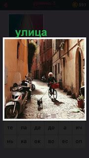 по улице города двигается на велосипеде человек и бежит собака