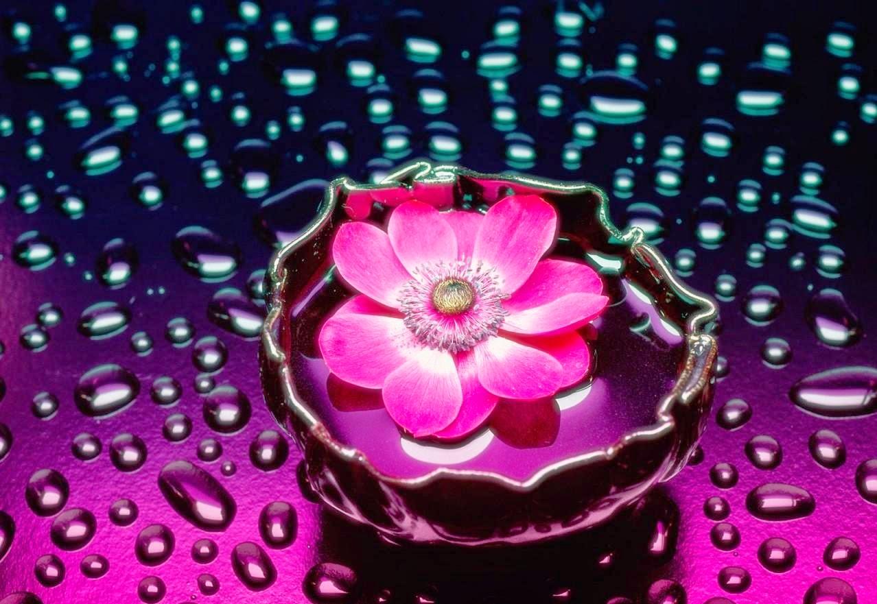 اجمل الصور ثلاثية الابعاد صور جميله جدا ثري دي صباح الورد