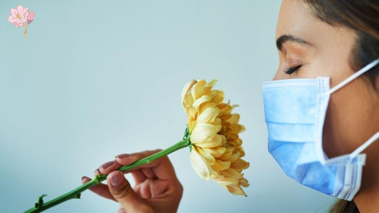 الفرق في فقدان حاسم الشم خلال الإصابة بكورونا والانفلونزا