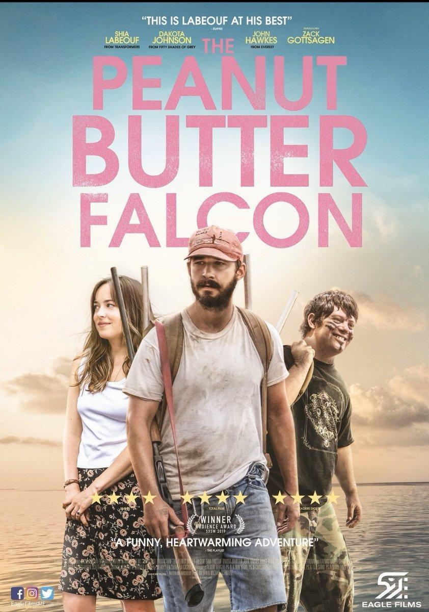 Download The Peanut Butter Falcon (2019) Full Movie in Hindi Dual Audio BluRay 720p [1GB]