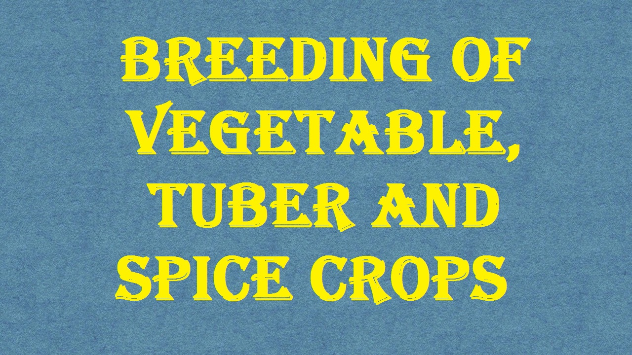 Breeding of Vegetable Tuber and spice crops ICAR Ecourse Free PDF Book Download e krishi shiksha
