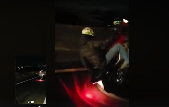 Vídeo: Para quem é vida louca e gostar andar assim de moto