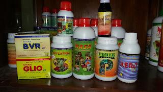 tokopupuknasa.com agen pupuk nasa di nagan raya