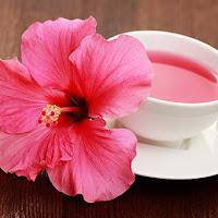 Estudo: extrato de hibisco combate o câncer de mama eficazmente