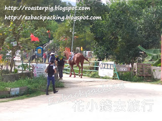 大棠騎術學校