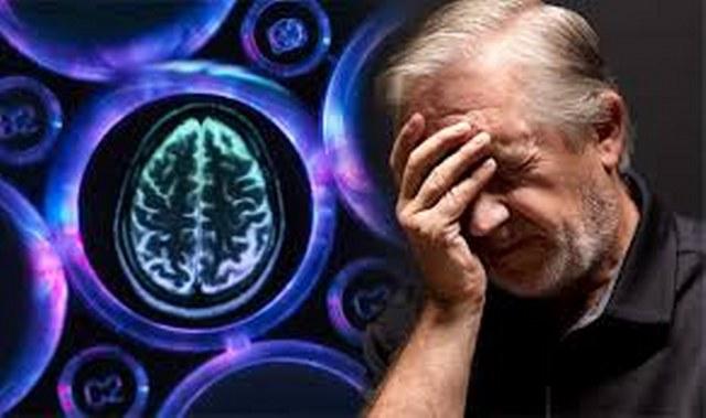 images 640x379 Cegah Penyakit Gampang Lupa Dengan Ginkgo Biloba